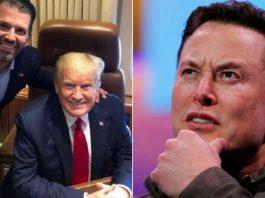 Trump's Son Urges Elon Musk To Create A Social Media Platform