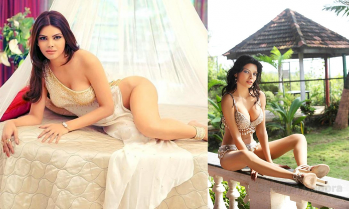 Hot photos of Sherlyn Chopra